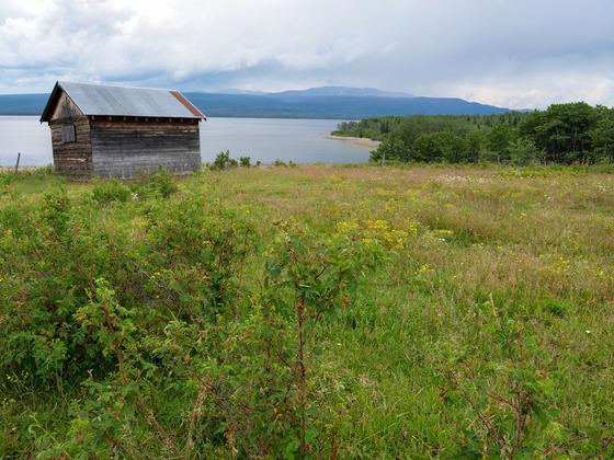 Thumb wistaria farmland ootsa lake 17