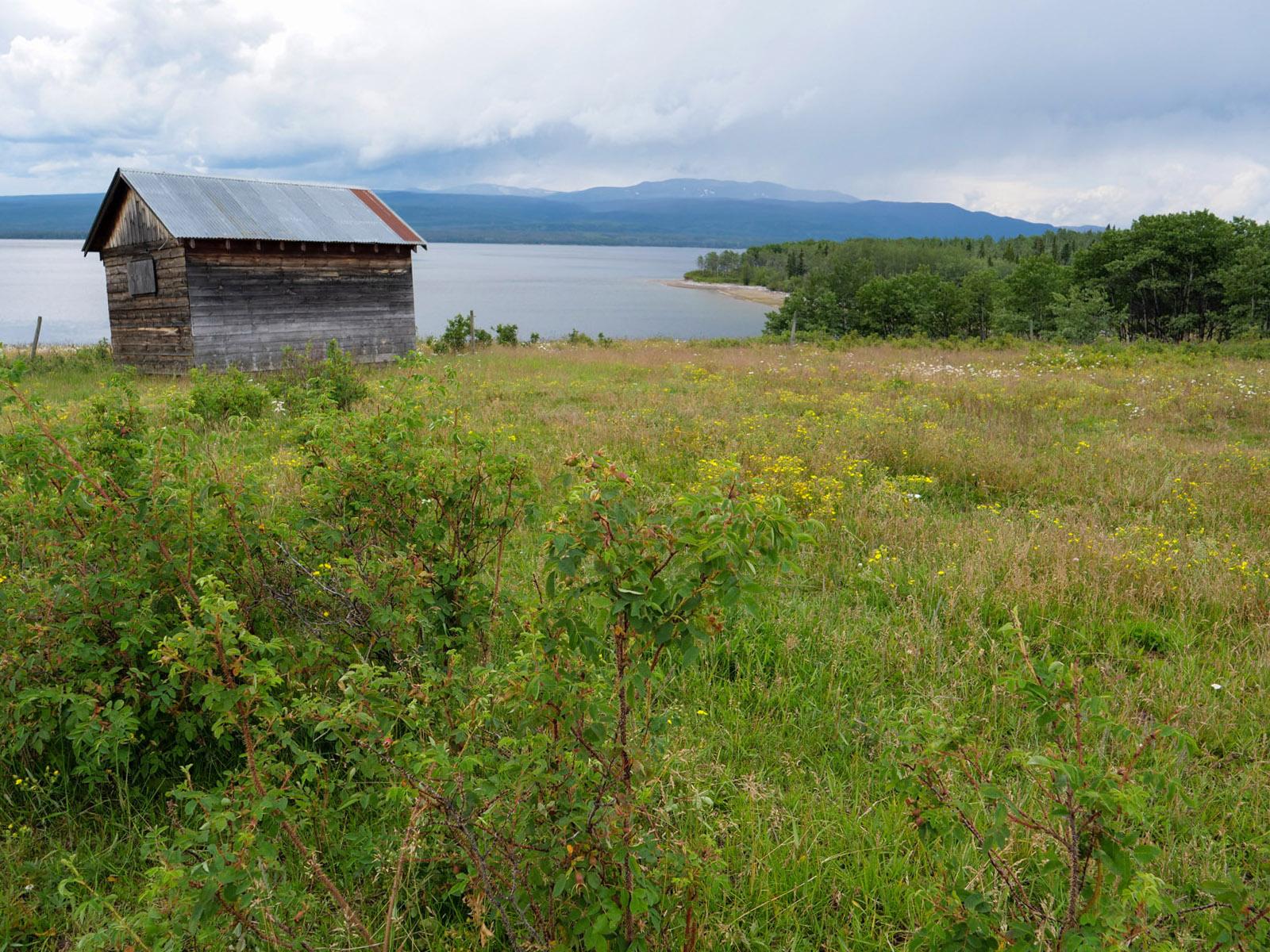 Wistaria farmland ootsa lake 17