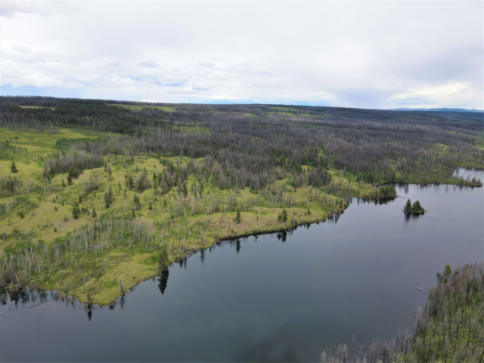Loon lake ranch 02