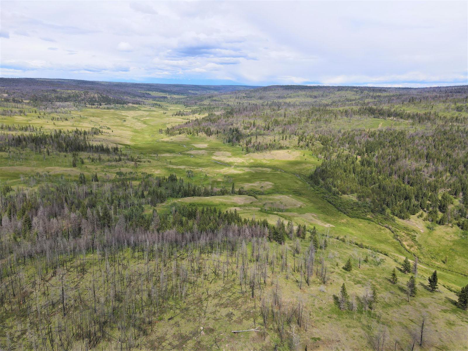 Loon lake ranch 04