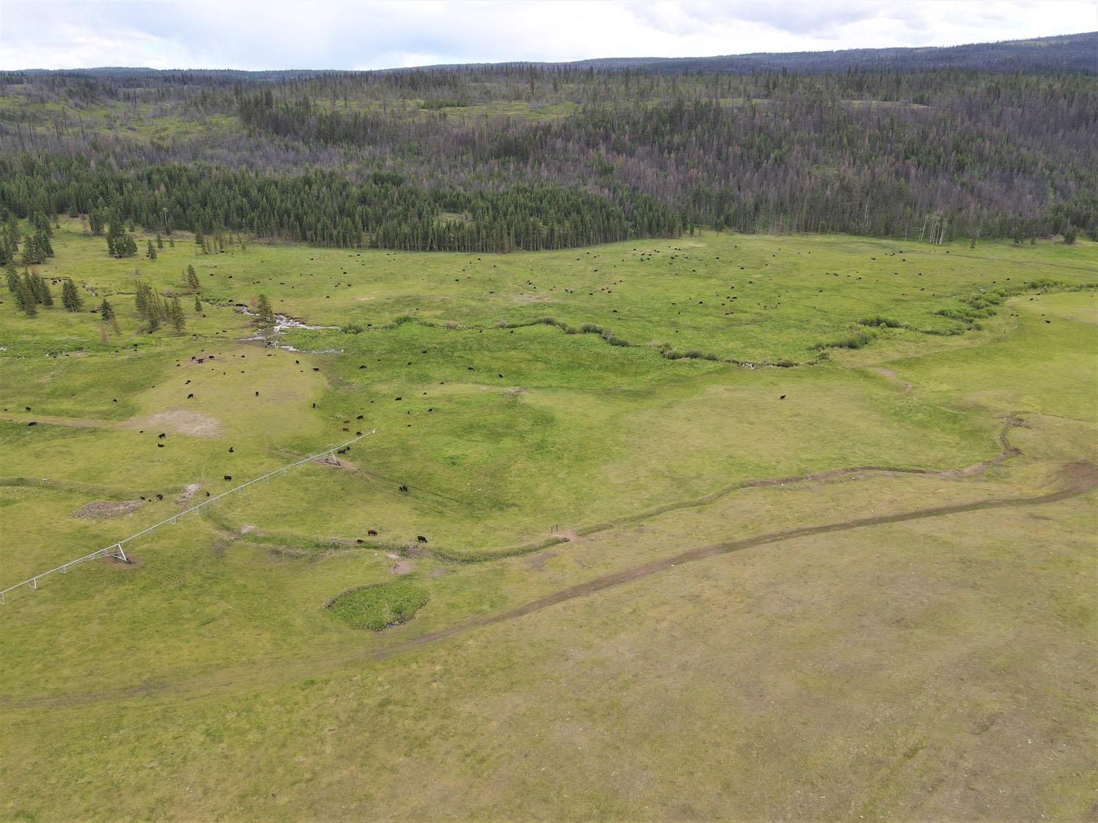 Loon lake ranch 07