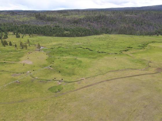 Thumb loon lake ranch 07