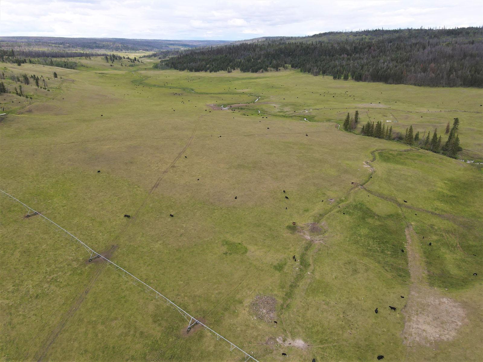 Loon lake ranch 08