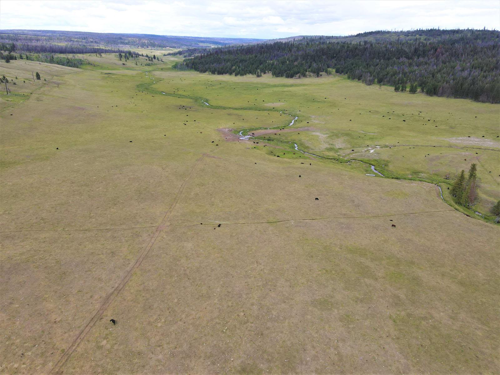 Loon lake ranch 09