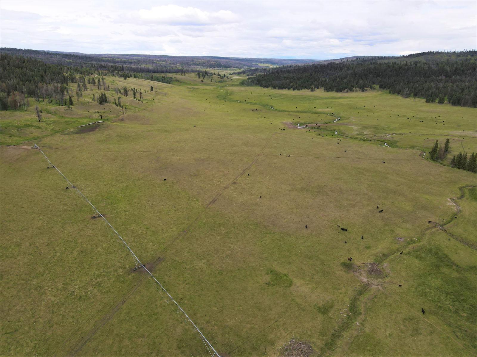 Loon lake ranch 11