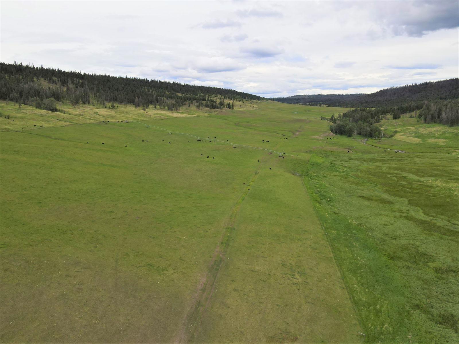 Loon lake ranch 20