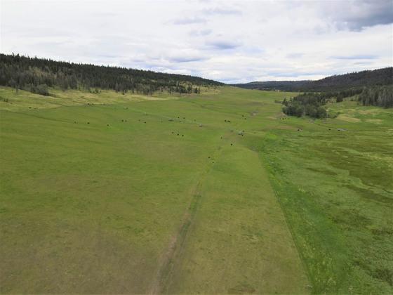Thumb loon lake ranch 20