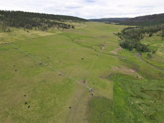 Thumb loon lake ranch 21