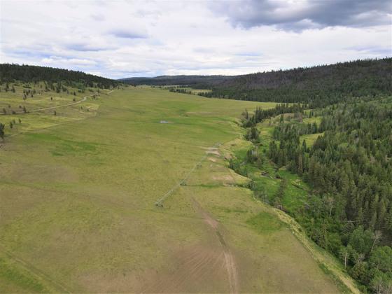 Thumb loon lake ranch 23