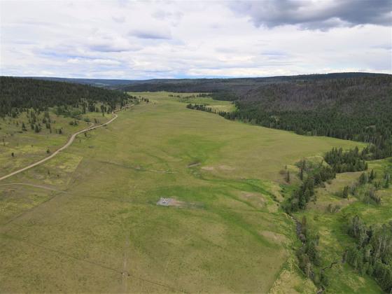 Thumb loon lake ranch 24