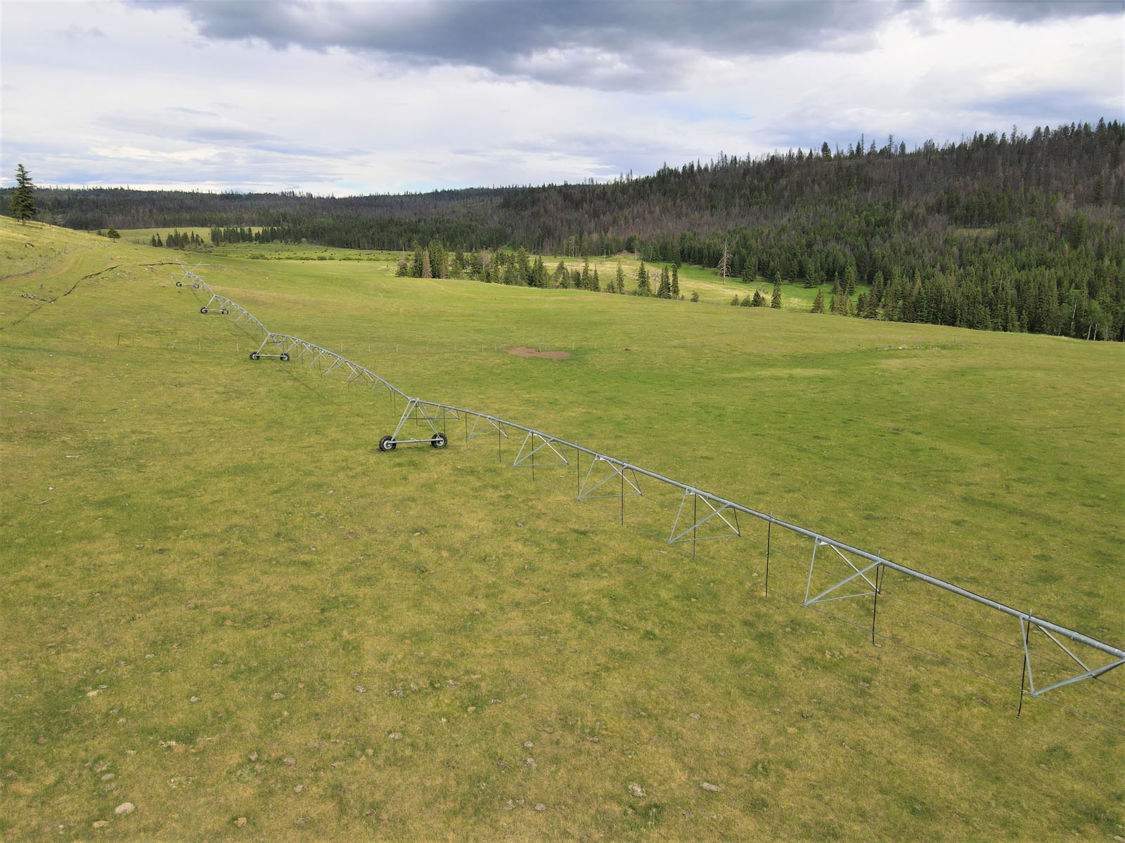 Loon lake ranch 29