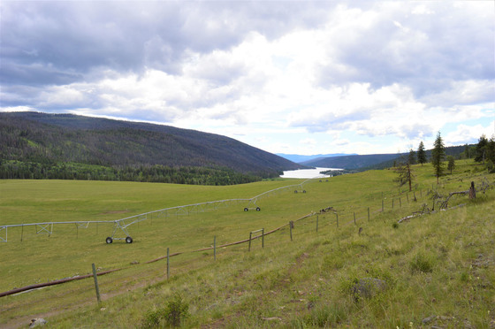 Thumb loon lake ranch 37