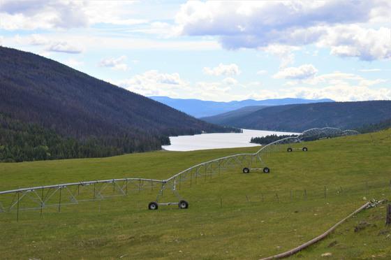 Thumb loon lake ranch 38