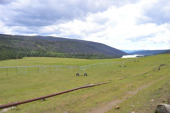 Thumb loon lake ranch 39