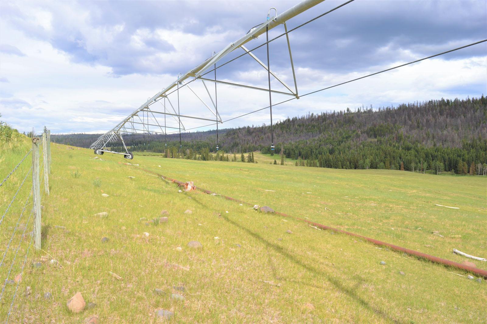 Loon lake ranch 40