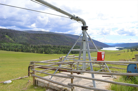 Thumb loon lake ranch 41