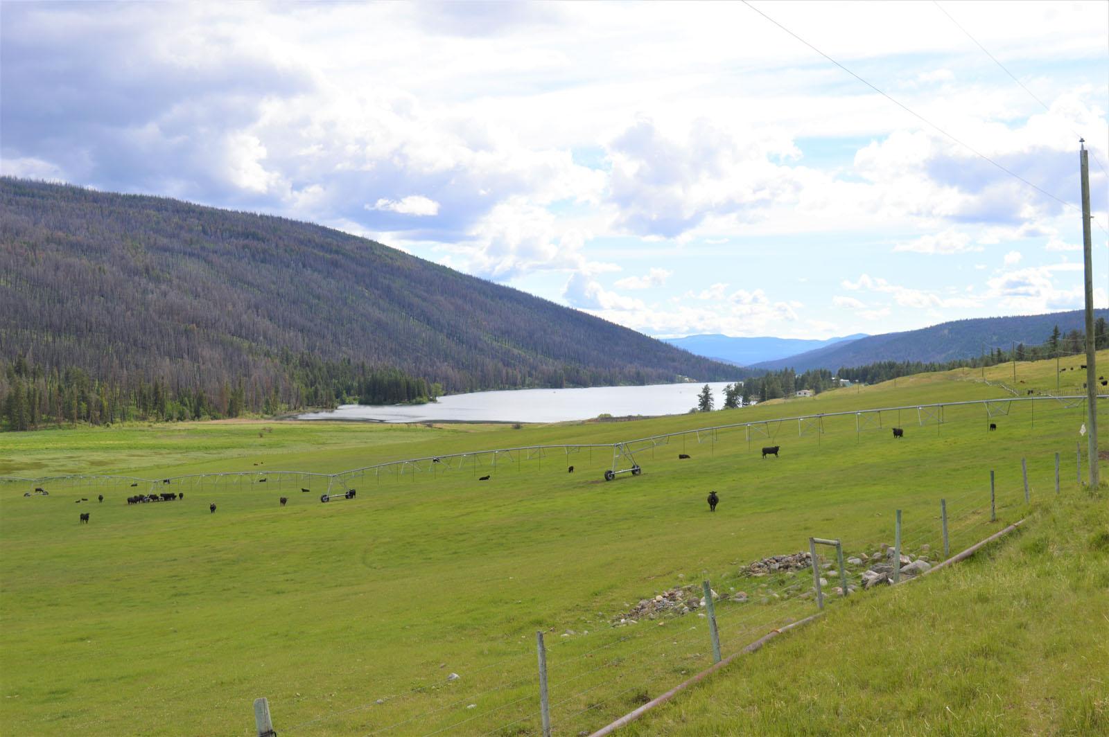 Loon lake ranch 43