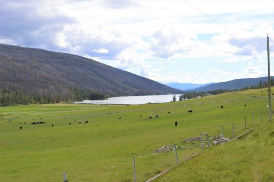 Thumb loon lake ranch 43