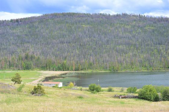 Thumb loon lake ranch 44