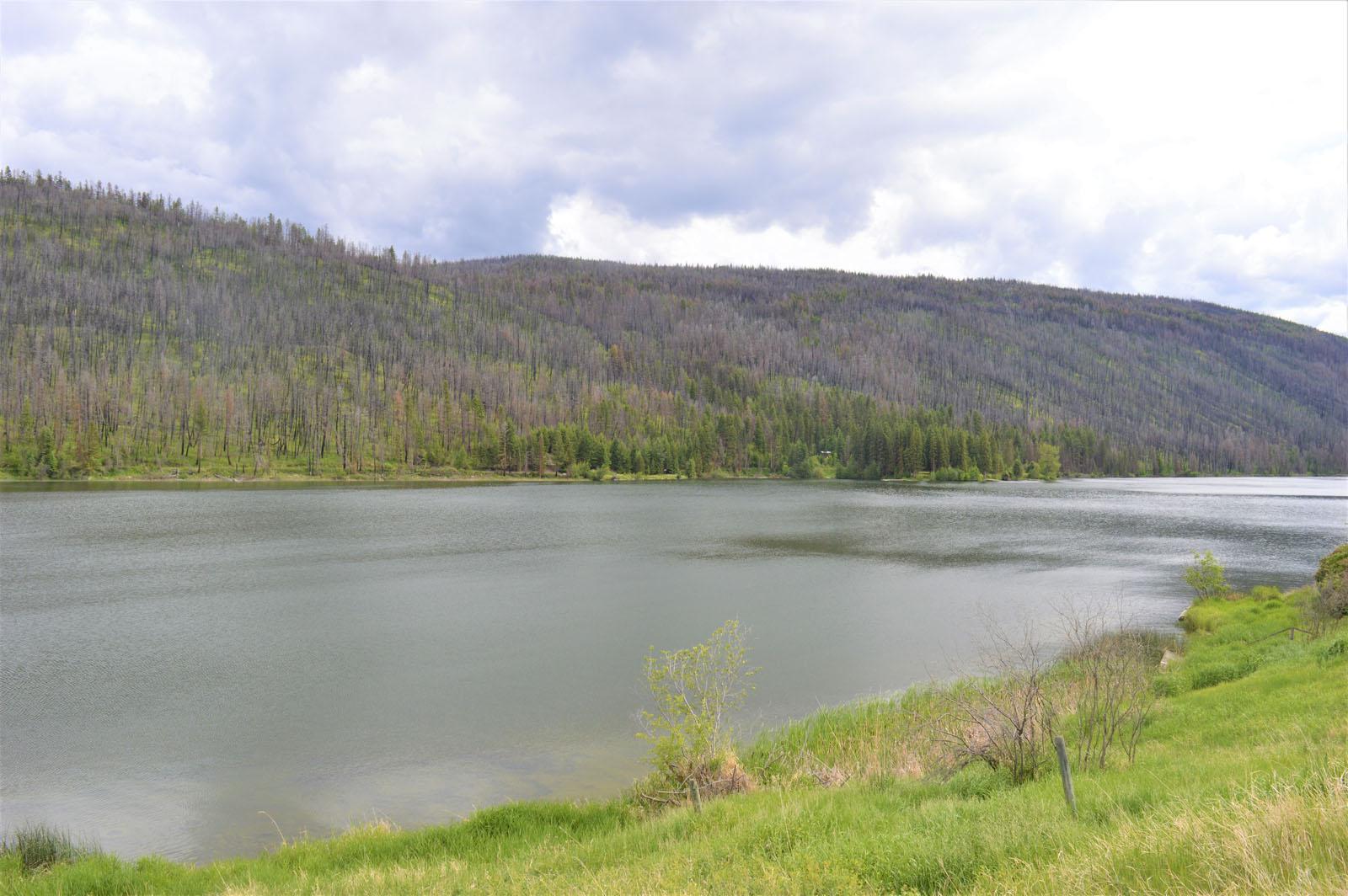 Loon lake ranch 45