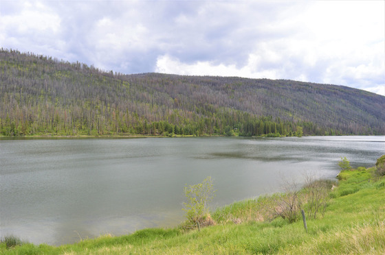 Thumb loon lake ranch 45