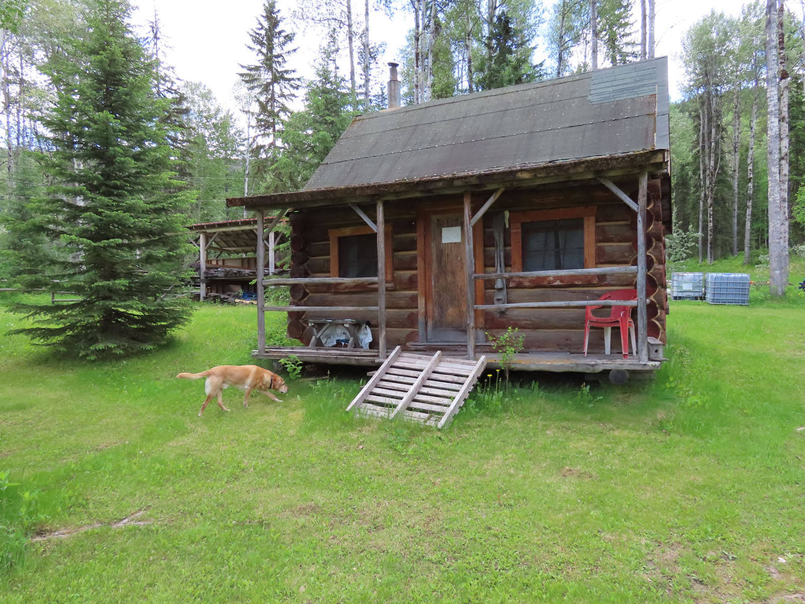 Canim lake resort 75