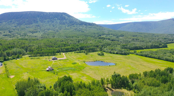 80 Acre Bucolic Farm with Country Home - Lone Prairie, BC