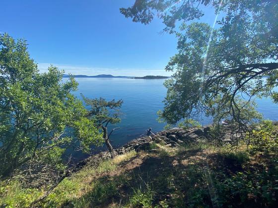 Thumb sidney island 01