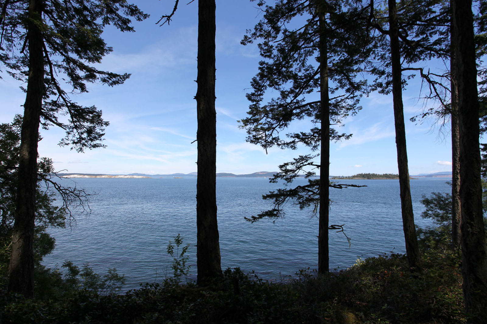 Sidney island 05