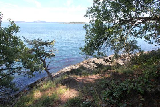 Thumb sidney island 06