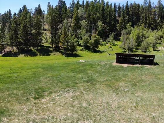 Thumb jd ranch ta ta creek 36