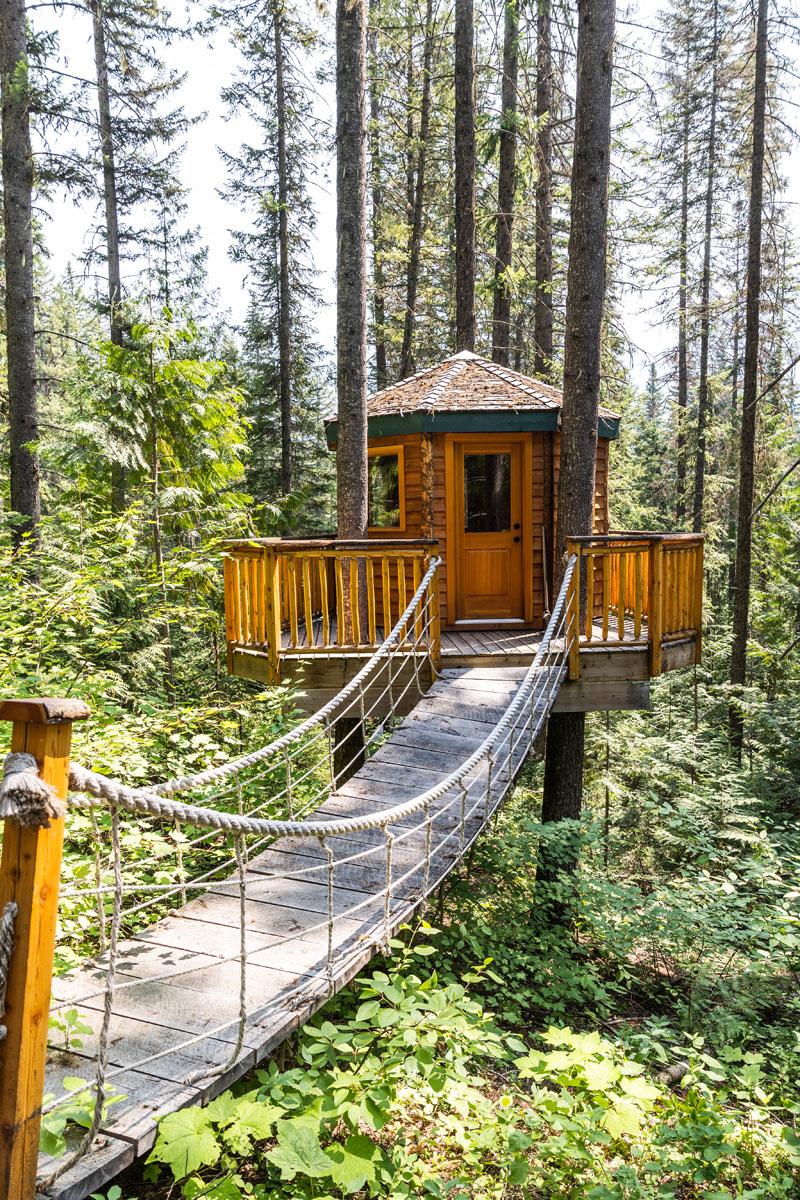 Mount robson log home 33