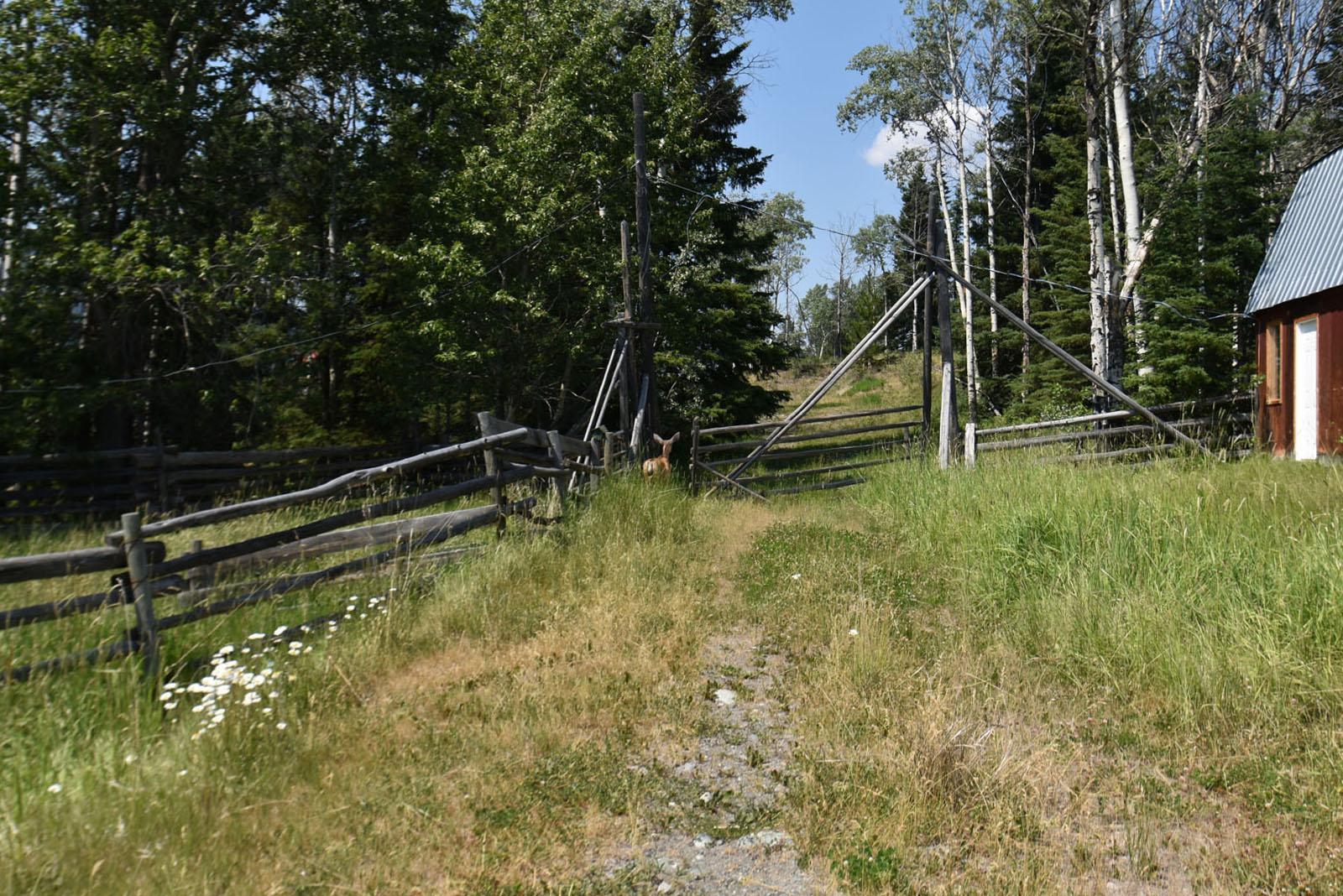Nuit trails ranch 25