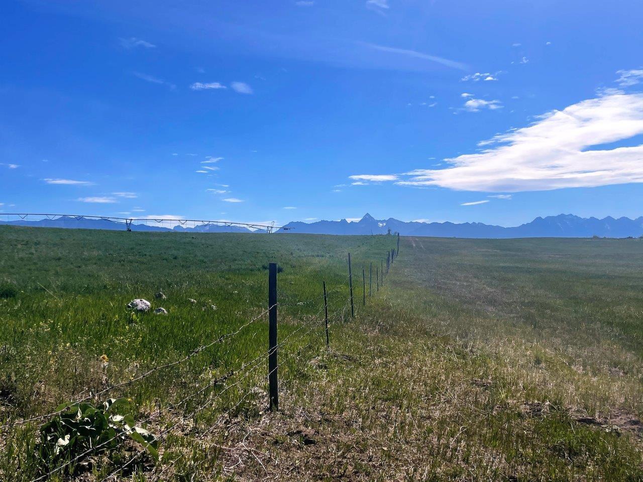 Cranbrook ranch acreage 09
