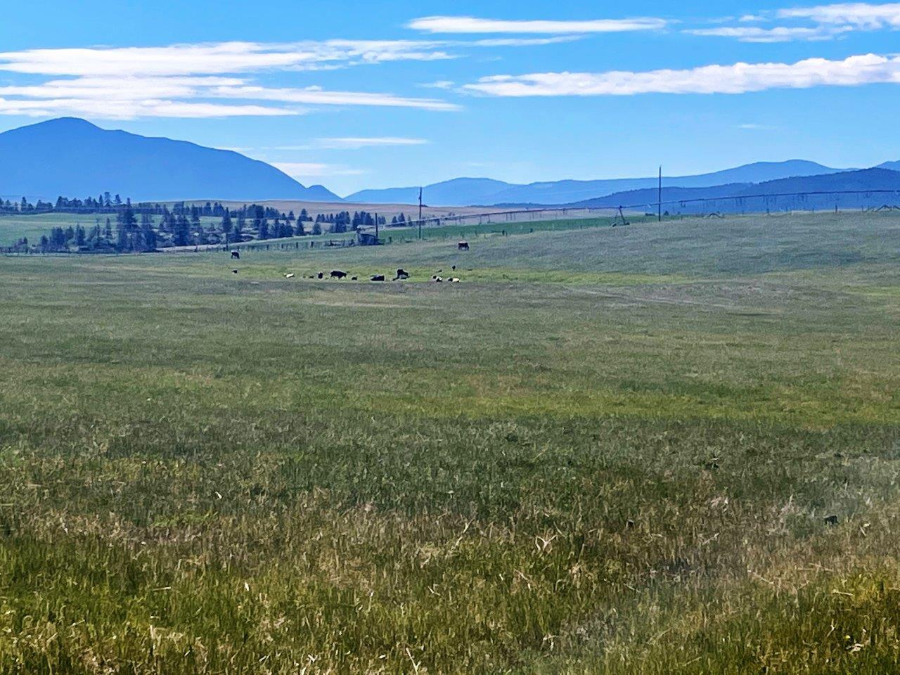 Cranbrook ranch acreage 15