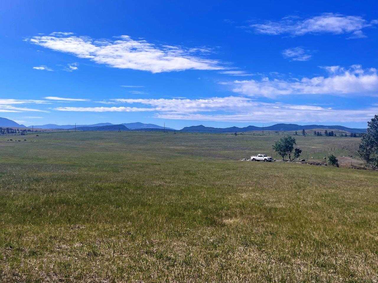 Cranbrook ranch acreage 18
