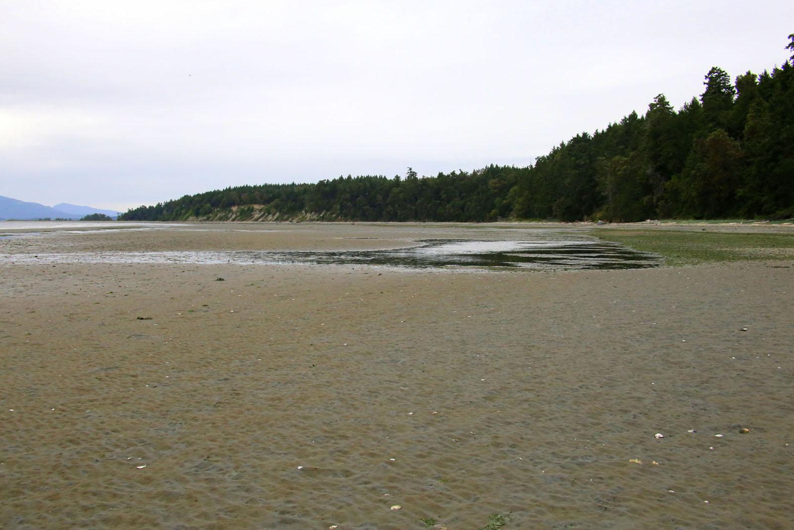 Sidney island 14