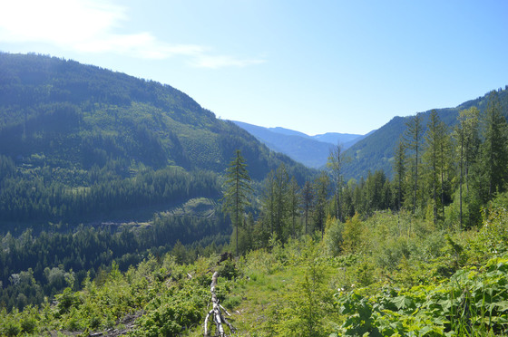 Large Acreage Above Cottonwood Lake Only 5 Minutes to Town - Nelson, BC