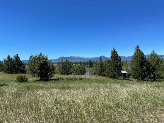 Thumb beaver dam lake ranch 02