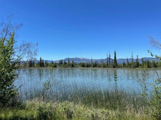 Thumb beaver dam lake ranch 22