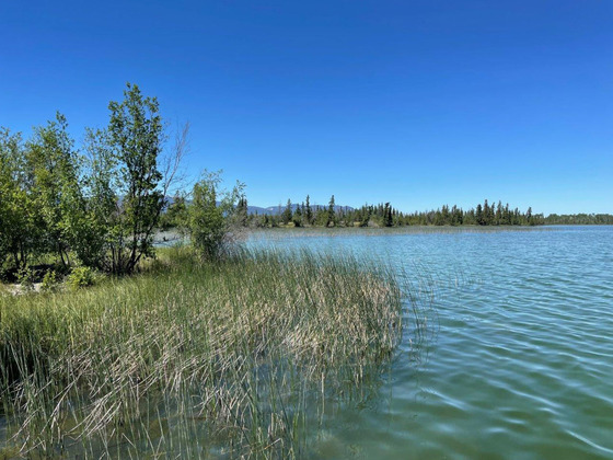Thumb beaver dam lake ranch 23