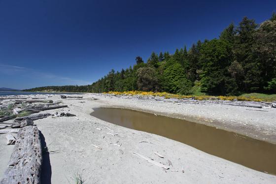 Thumb sidney island 13