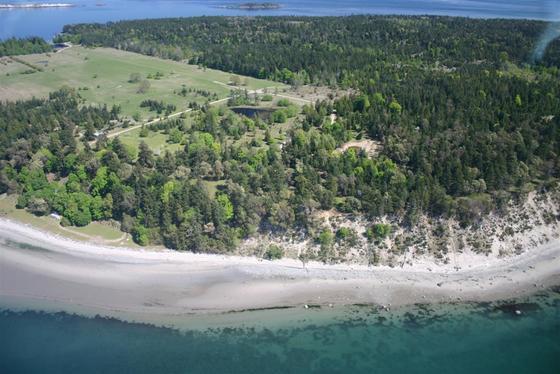 Thumb sidney island 15