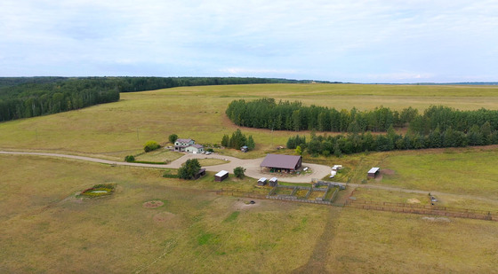 Versatile 770 Acre Ranch with 600+ Cleared Acres, Shop and Country Home - Dawson Creek, BC
