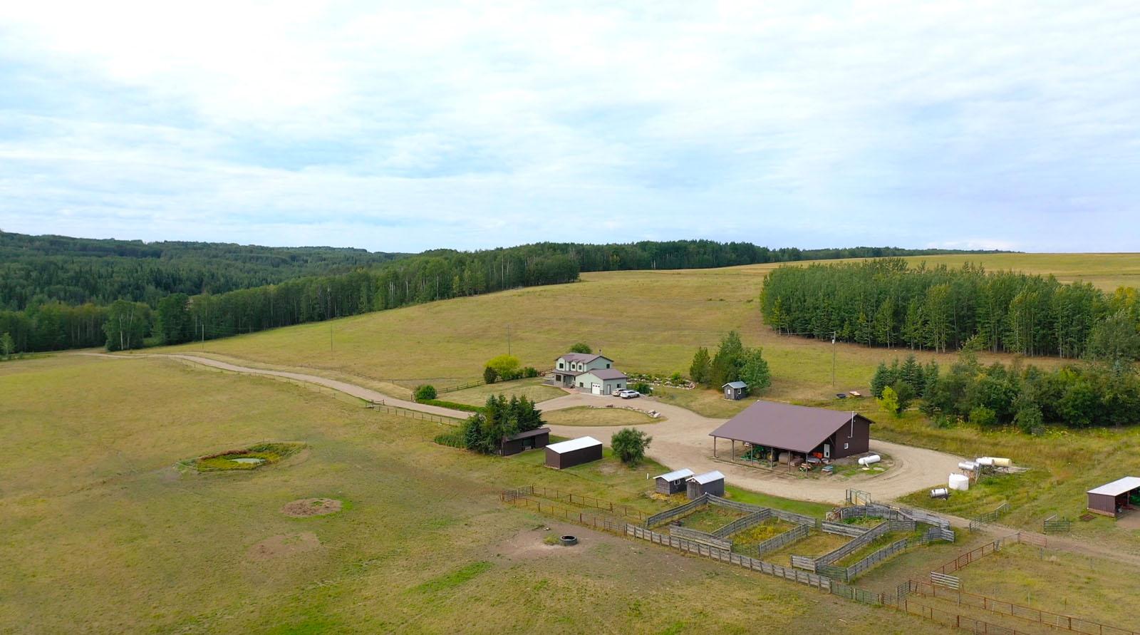 Dawson creek ranch 02