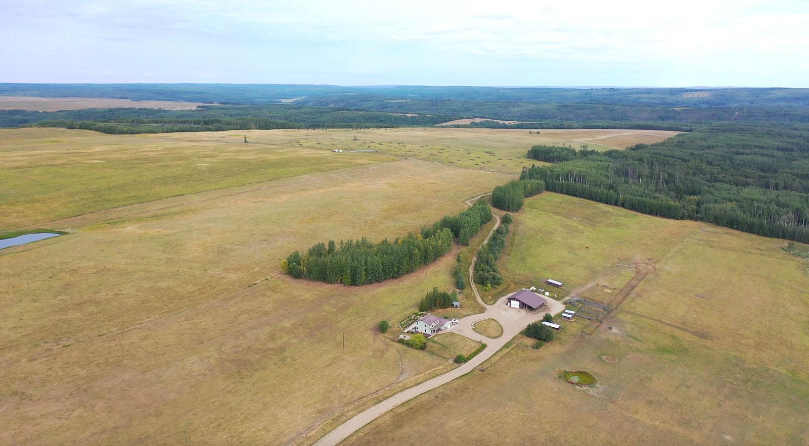 Dawson creek ranch 06