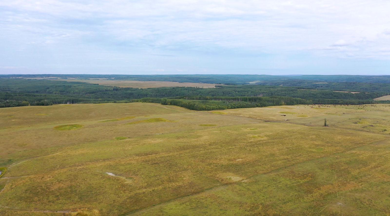 Dawson creek ranch 10