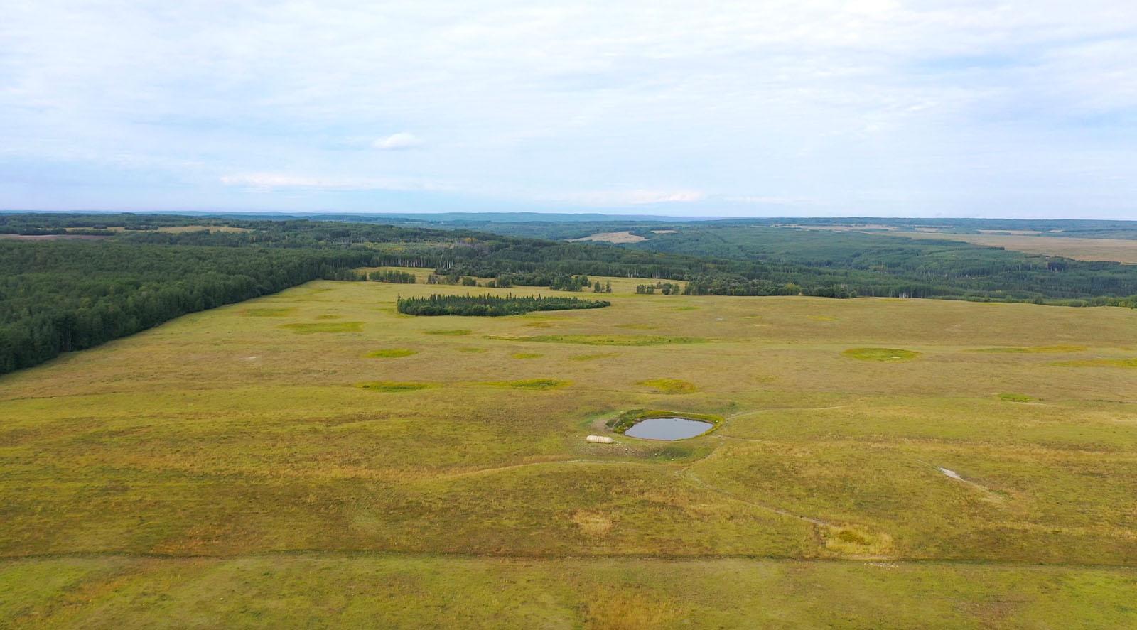 Dawson creek ranch 13