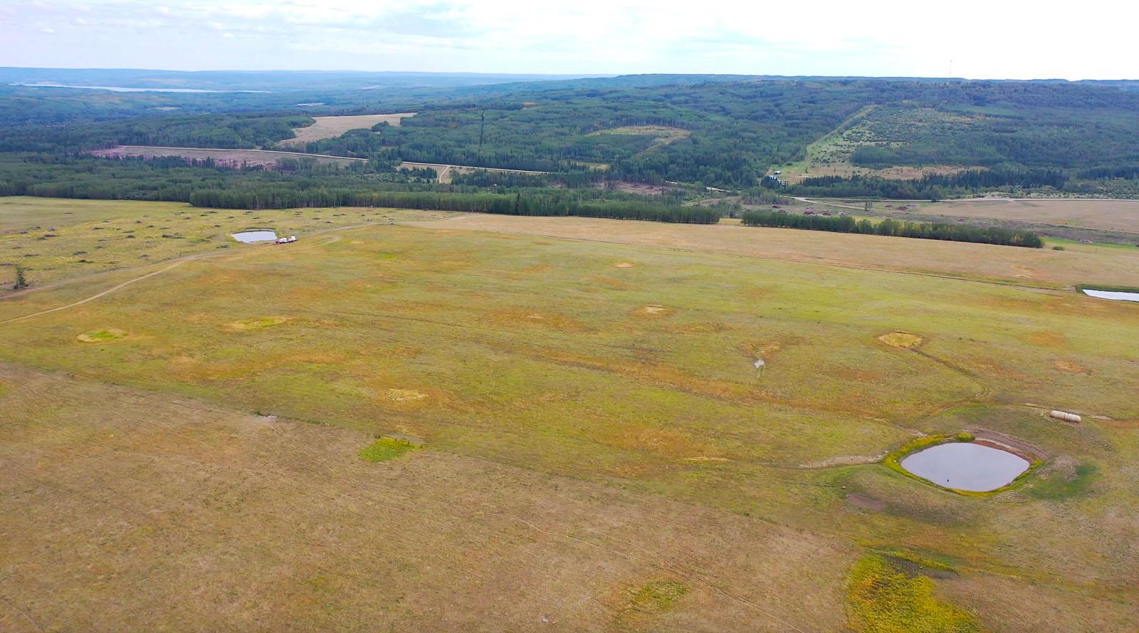 Dawson creek ranch 14