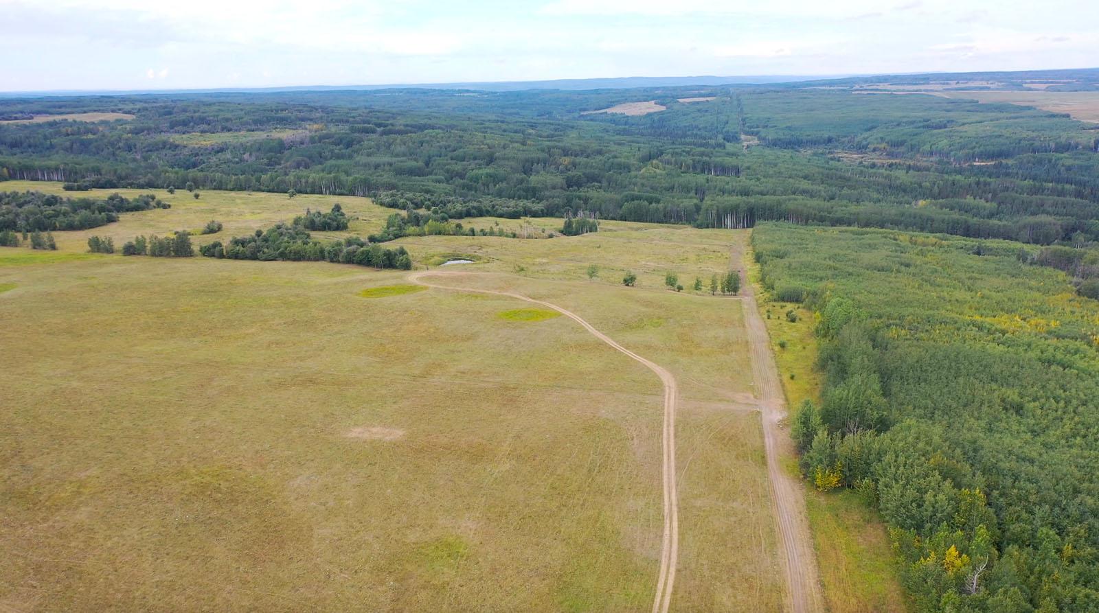 Dawson creek ranch 16